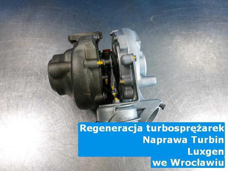 Turbosprężarki z pojazdu marki Luxgen po diagnostyce w Wrocławiu
