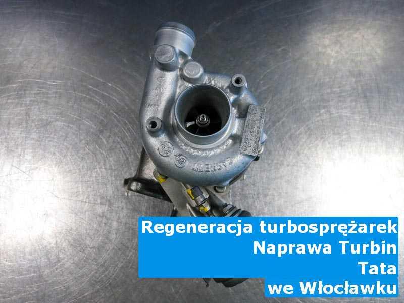 Turbiny z samochodu TATA z przywróconymi osiągami z Włocławka